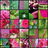 L'importance des images ou photos dans les sites internet