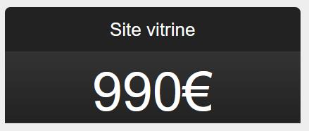 Site vitrine 990€
